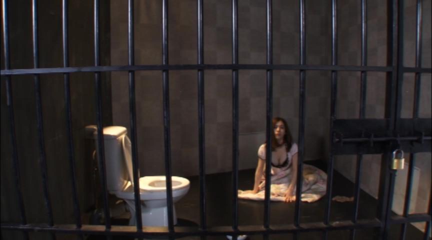 完全なる飼育 第二章 二人の監禁調教された女