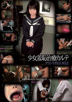 DUGA 少女羞恥治療カルテ クランケ FILE NO.2