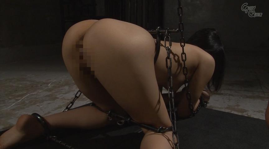 Anal Device BondageIII 鉄拘束アナル拷問  星川麻紀のサンプル画像