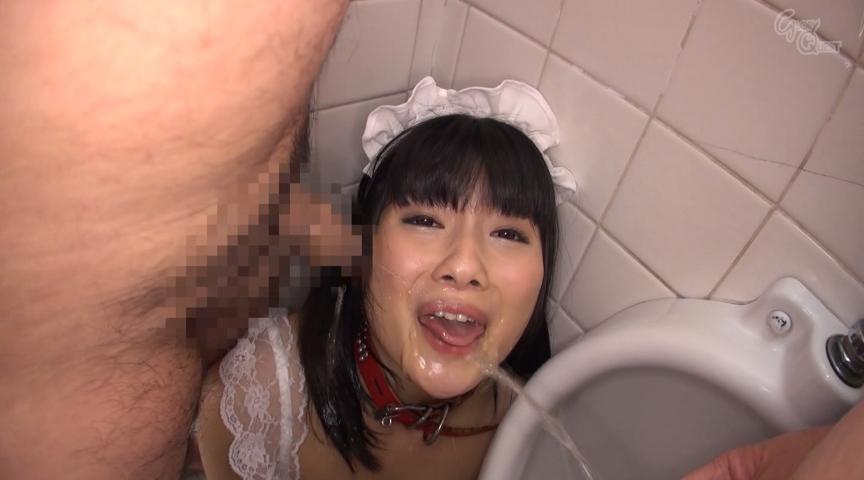 公衆トイレの便器を舐めて興奮する陵辱志願ド変態マ○コ