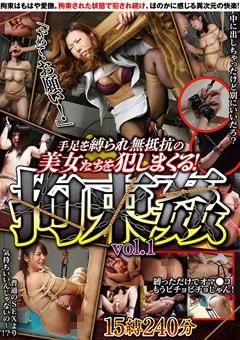 手足を縛られ無抵抗の美女たちを犯しまくる拘束姦 Vol.1