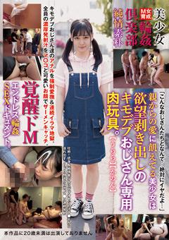 「美少女輪姦倶楽部」のパッケージ画像