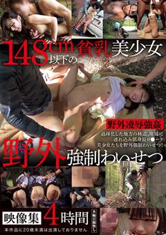 「148cm以下の貧乳美少女野外強制わいせつ映像集4時間」のパッケージ画像