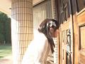 女の子のオシッコ 4時間 Vol.8サムネイル1