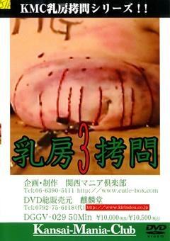 乳房拷問3