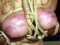 乳房拷問3サムネイル5