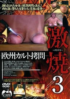 欧州カルト拷問 激焼3