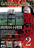 欧州カルト拷問 激焼2