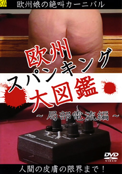 欧州スパンキング大図鑑 ~局部電流編~