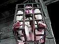 囚の起源 Vol.7