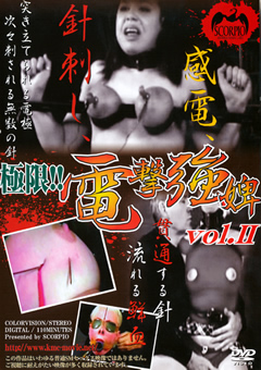 極限!!電撃強婢 vol.II