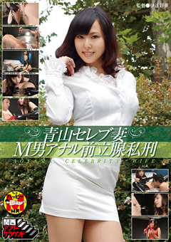 【M男動画】青山ゴージャス妻M男アナル前立腺私刑