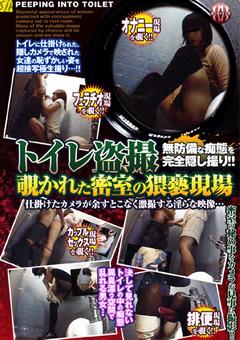 トイレ盗撮 覗かれた密室の猥褻現場2