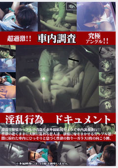 車内調査 淫乱行為ドキュメント2