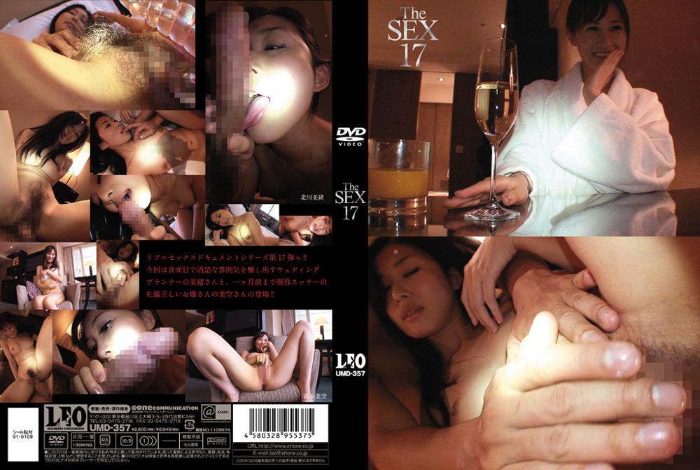 """【エロ動画】""""The SEX17″のトップ画像"""
