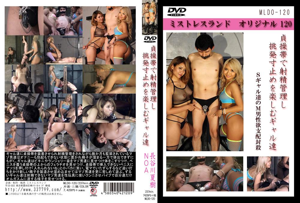 長谷川夏樹クンニ動画|貞操帯で射精管理し挑発寸止めを楽しむギャル達