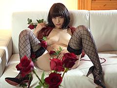 薔薇の鎖 高野しずか