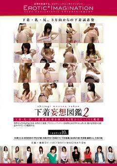 下着妄想図鑑2