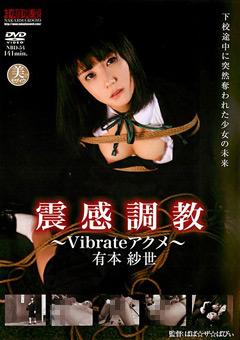 震感調教 ~Vibrateアクメ~ 有本紗世