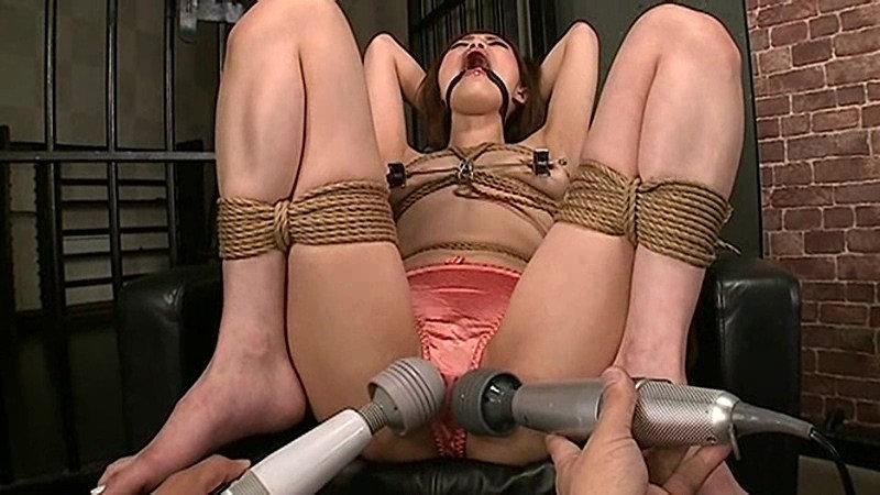 調教志願の人妻 奈落の肉奴隷3 瞳ゆら