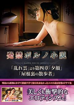 【多田淳子動画】準発禁ポルノ小説 -ドラマ