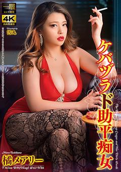 「ケバヅラド助平痴女 橘メアリー」のパッケージ画像