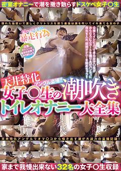 【盗撮動画】女子○生の潮吹き便所オナニー大全集