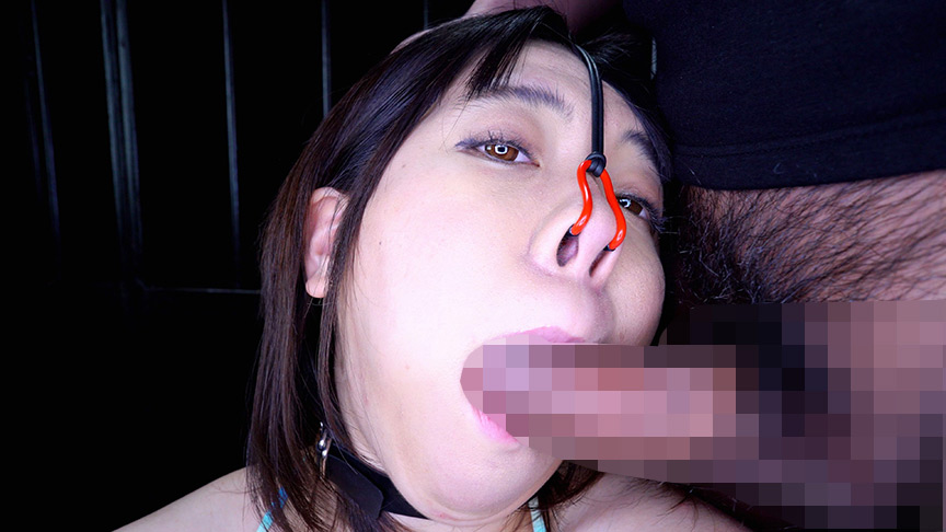 豚鼻ベストセレクション 画像 10