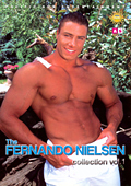 The FERNANDO NIELSEN collection vol.1