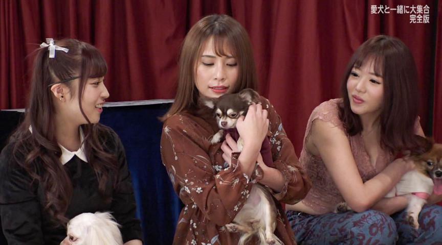 人気AV女優が愛犬と大集合!完全版サムネイル04