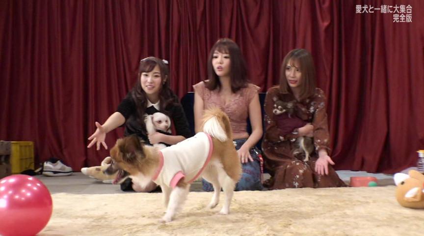 人気AV女優が愛犬と大集合!完全版サムネイル05