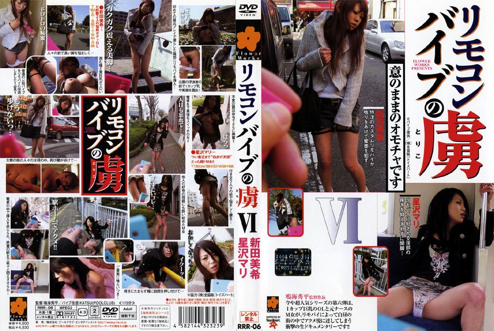 辱め:リモコンバイブの虜6 新田美希 星沢マリ