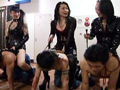 東京女神伝説 不夜城の女神達