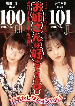 お姉さんは好きですか? 巨乳セレクション Vol.1