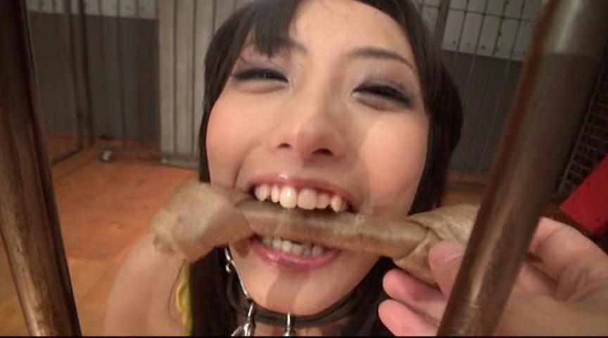 日本一の咀嚼大全集