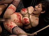 S級熟女 調教SEXコレクション 【DUGA】