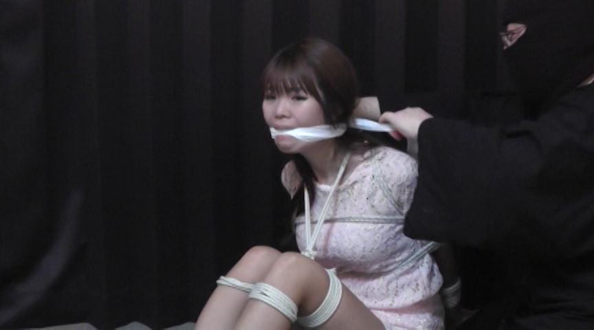夏川梨花 -羞恥の令嬢- 全篇 の画像10