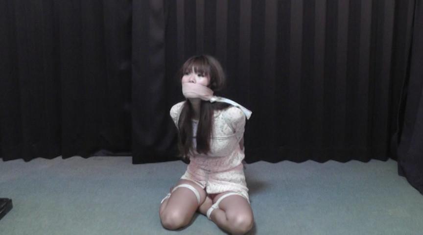 夏川梨花 -羞恥の令嬢- 全篇 の画像6