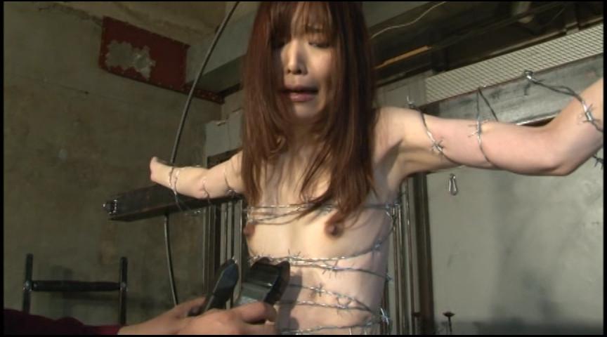 PAIN GATE 釘血絞首刑 画像 11