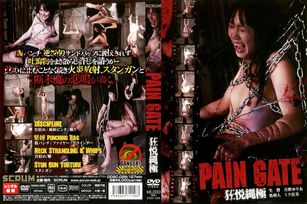DDSC-028 PAIN GATE 狂悦縄極 パッケージ画像