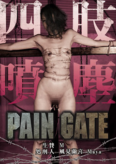 PAIN GATE 四肢噴塵