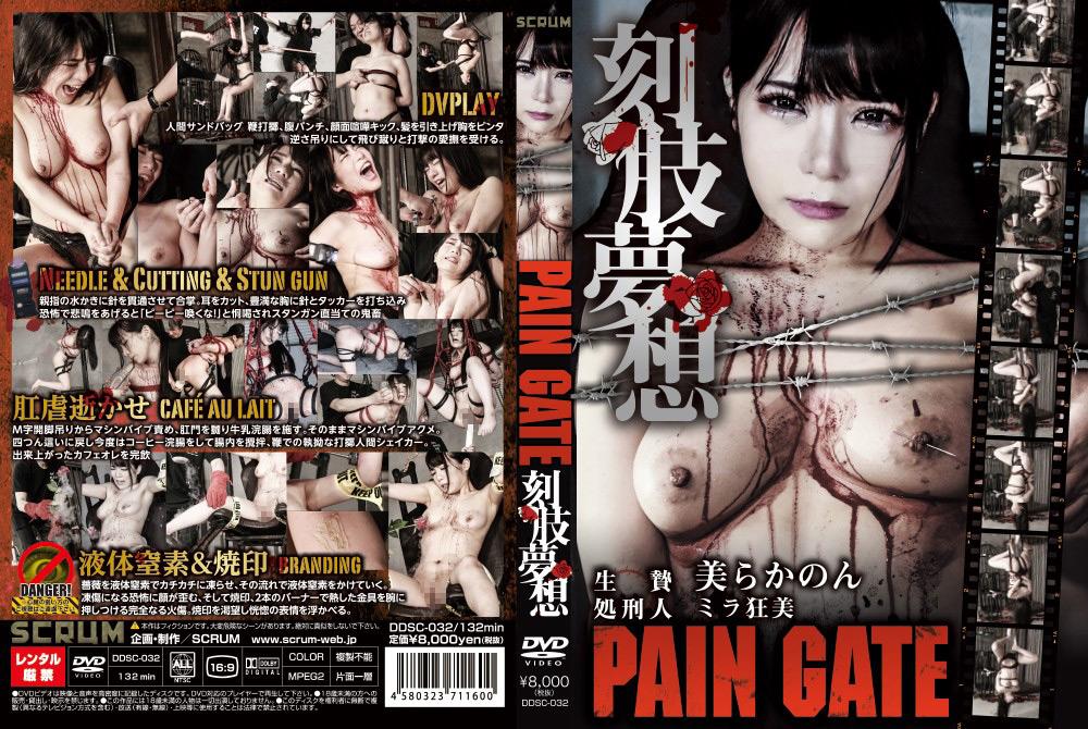 PAIN GATE 刻肢夢想