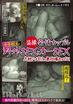 盗撮 発情カップル 女子校生の野外SEXとカーSEX