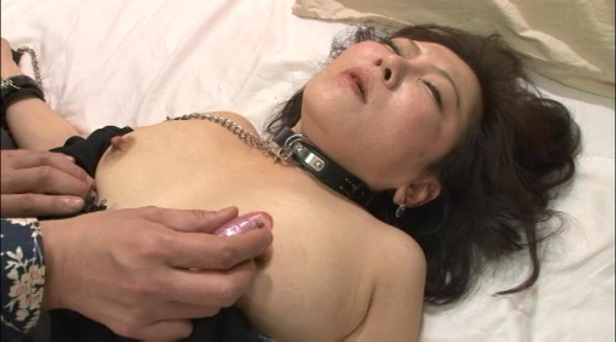 家畜の女 ドMに目覚めたこの肉体サムネイル09