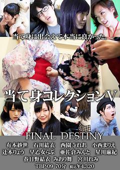【有本紗世動画】当て身コレクション5-FINAL-DESTINY-SM