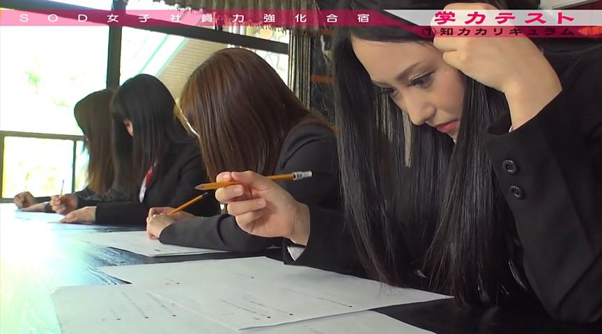 """2013真夏のSOD女子社員 """"女子社員力強化合宿""""のサンプル画像"""