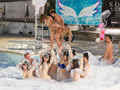 SODstar 11 SEX BUBBLE PARTY 2019-6