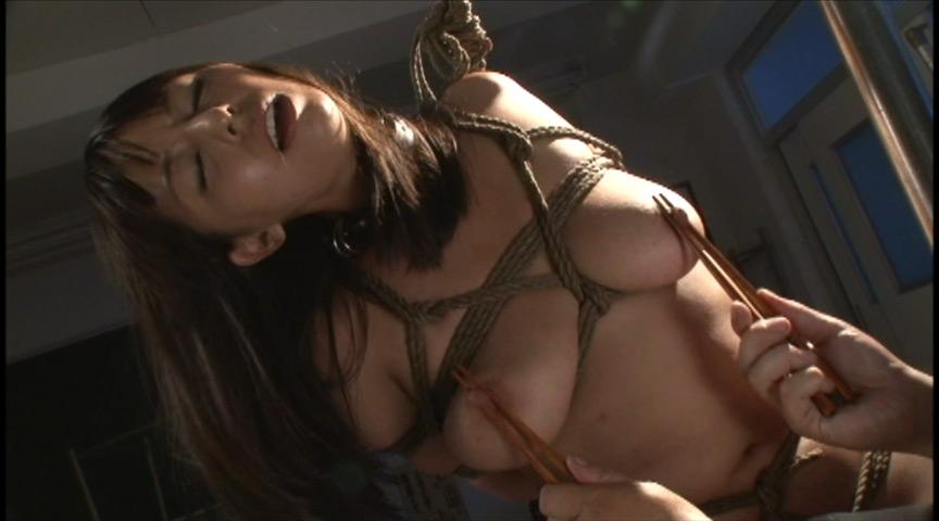 乳首ポンプで吸引され肥大化した乳首たち2 の画像3