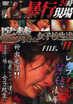 暴行現場24時 監禁された女子校生達 FILE.2