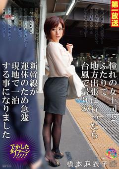 憧れの女上司とふたりで地方出張に行ったら台風で帰りの新幹線が運休のため急遽現地で一泊する事になりました 橋本麻衣子